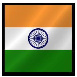 vizos į Indiją